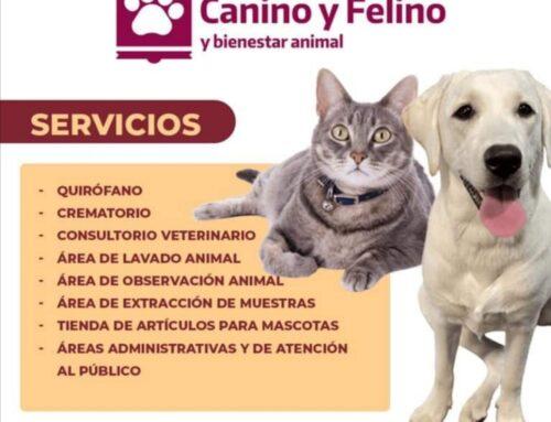 Centro de Control Canino y Felino de Guadalupe presenta 20% de avance; brindará múltiples servicios